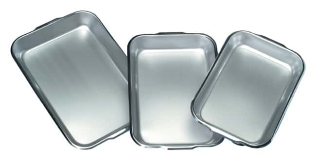 Thermo Scientific Shandon Stainless-Steel Instrument Trays:Spatulas, Forceps