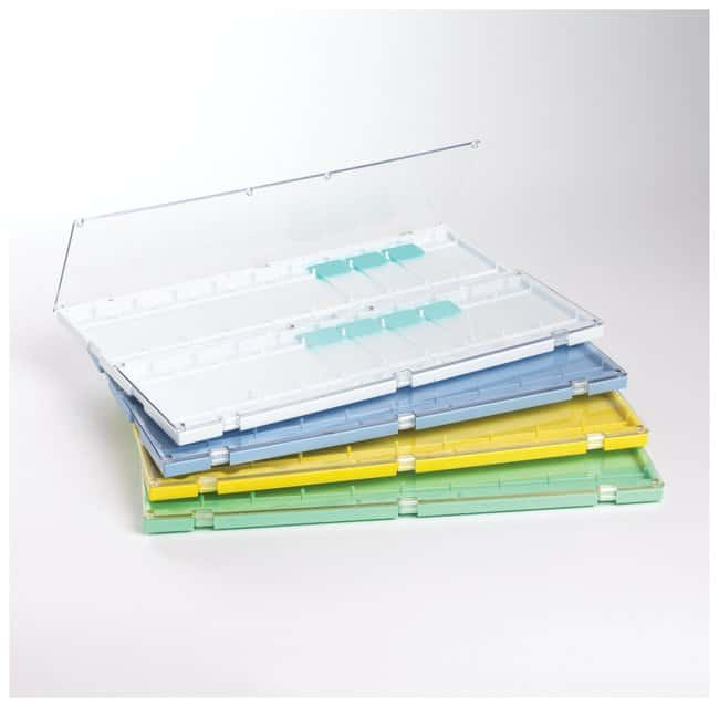 Thermo Scientific Plastic Slide Folders:Microscopes, Slides and Coverslips:Microscope