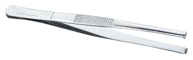 Thermo Scientific Shandon Tissue Thumb Forceps:Spatulas, Forceps and Utensils:Dissection