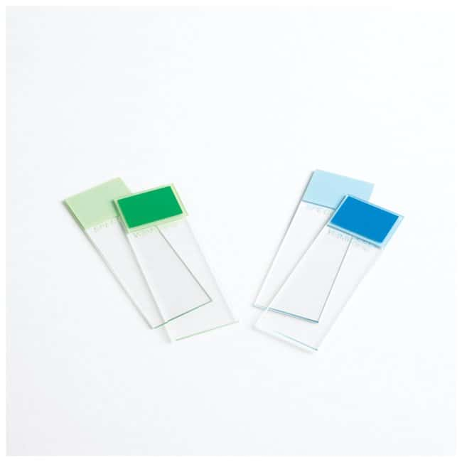 Thermo Scientific Shandon Colormark Slides :Microscopes, Slides and Coverslips:Microscope