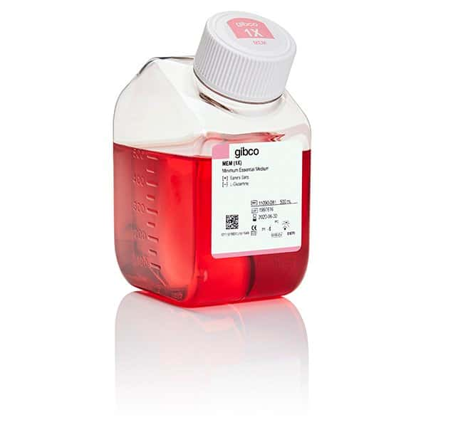 GibcoMEM, no glutamine:Cell Culture Media:Basal Media