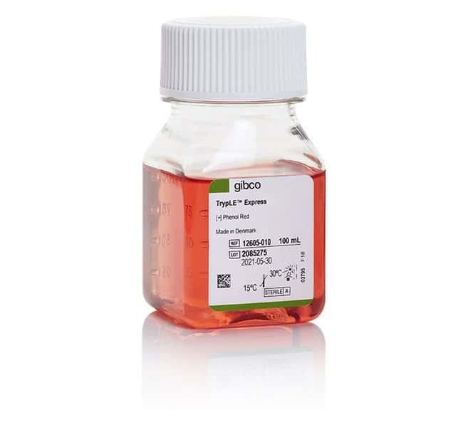 Gibco™TrypLE™ Express Enzyme (1X), phenol red 100mL Gibco™TrypLE™ Express Enzyme (1X), phenol red