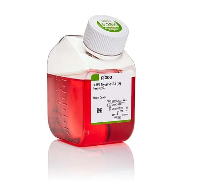 Gibco™ Trypsin-EDTA (0.25%), phenol red 500 ml Gibco™ Trypsin-EDTA (0.25%), phenol red