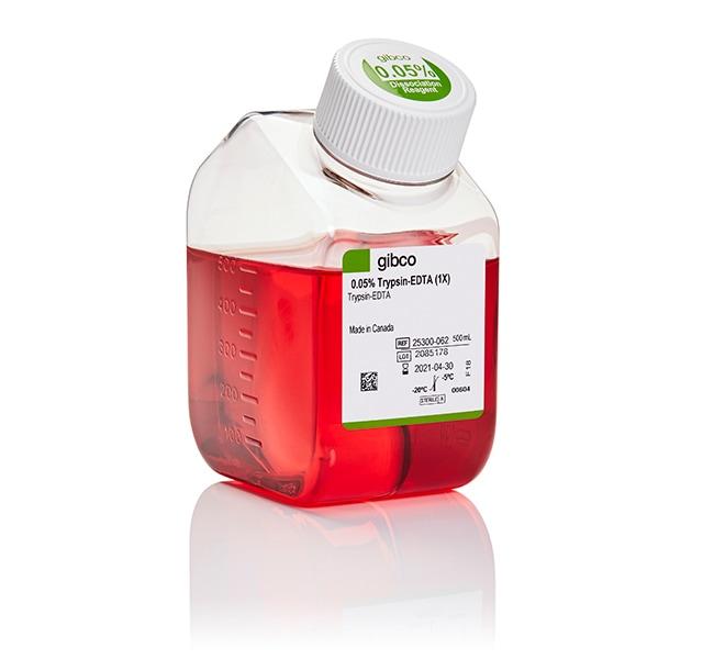 Gibco™Trypsin-EDTA (0.05%), phenol red 500ml Gibco™Trypsin-EDTA (0.05%), phenol red