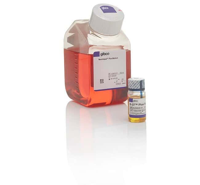 Gibco™ B-27™ Plus Neuronal Culture System