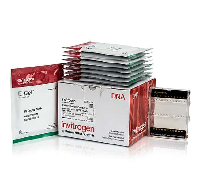 InvitrogenE-Gel Double Comb Agarose Gels with SYBR Safe DNA Gel Stain,