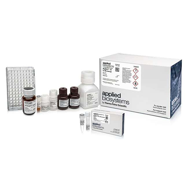 Invitrogen Magmax 96 For Microarrays Total Rna Isolation Kit 96 Preps Rna Preparation And Purification Fisher Scientific