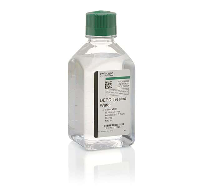 Invitrogen™ DEPC-Treated Water: Water Chemicals