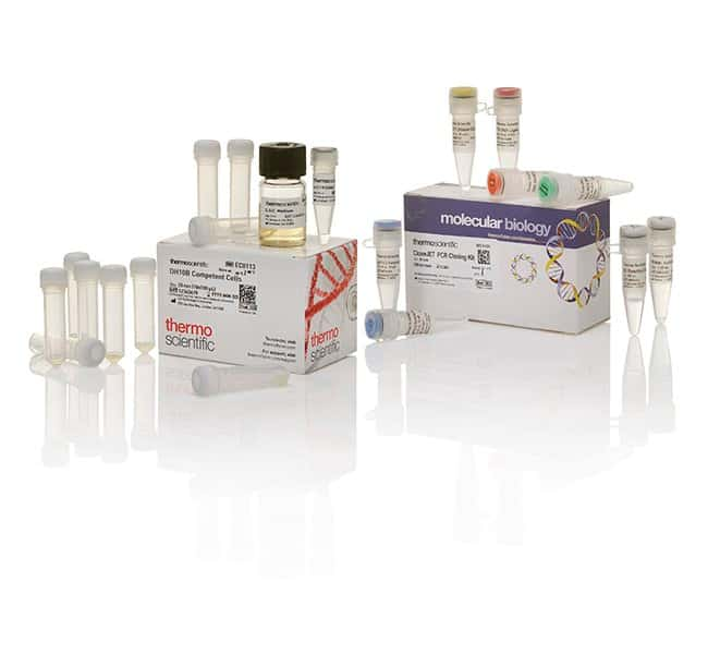 Thermo Scientific CloneJET PCR Cloning Kit with DH10B Competent ...