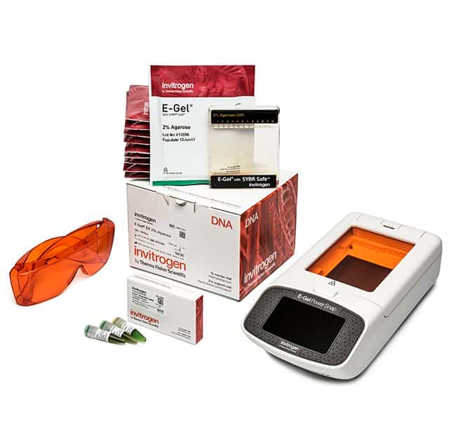 invitrogen e gel power snap electrophoresis device starter sybr rh fishersci se safe 2 soak safe 2 choose