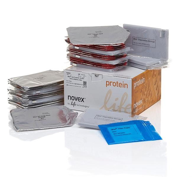 Invitrogen™iBlot™ Transfer Stack, nitrocellulose, mini
