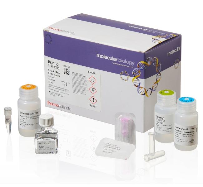 Thermo Scientific™GeneJET RNA Purification Kit For 250 preparations Thermo Scientific™GeneJET RNA Purification Kit