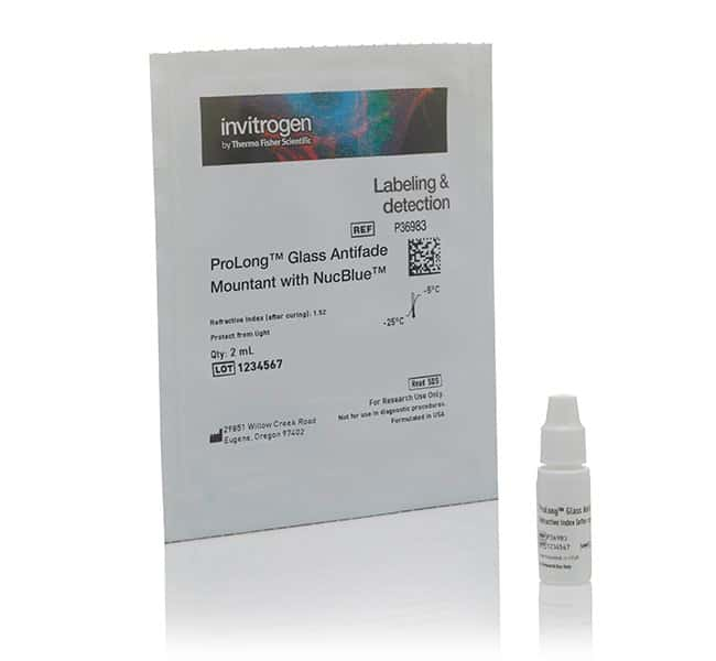 Invitrogen ProLong Glass Antifade Mountant with NucBlue Stain:Life Sciences:Protein