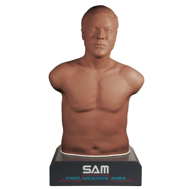 3B Scientific Cardionics SAM II Student Auscultation Manikin  Dark Skin:Gloves,