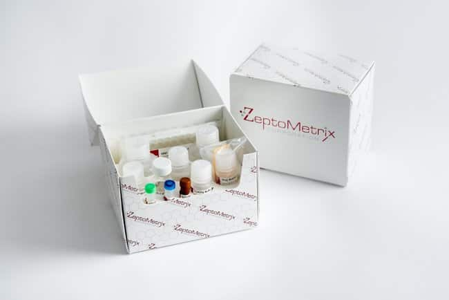 ZeptoMetrix RETROtek SIV p27 Antigen ELISA Kit:Electrophoresis, Western