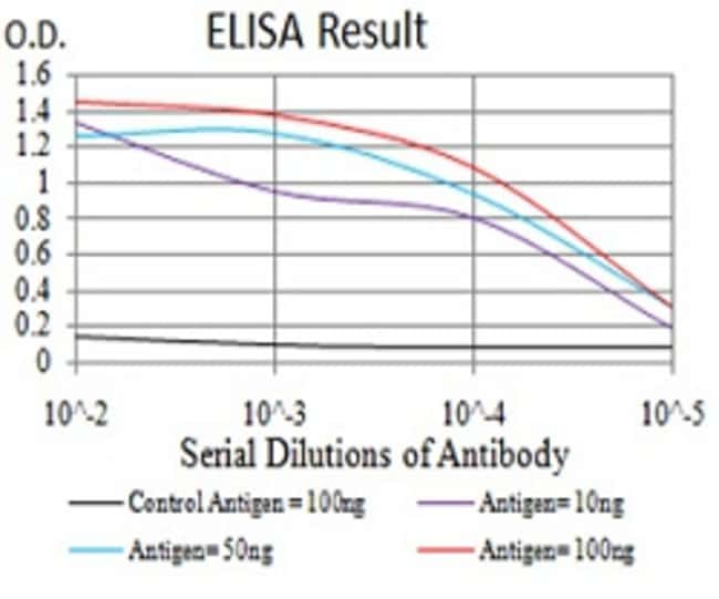 IL28A Mouse anti-Human, Clone:7B9A4, Abnova 100μg:Antibodies