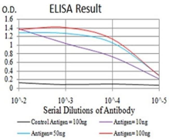 DNMT3L Mouse anti-Human, Clone:2D10H11, Abnova 100μg:Antibodies