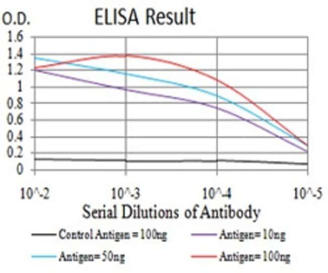 UCP3 Mouse anti-Human, Clone:6B8C6, Abnova 100μg:Antibodies