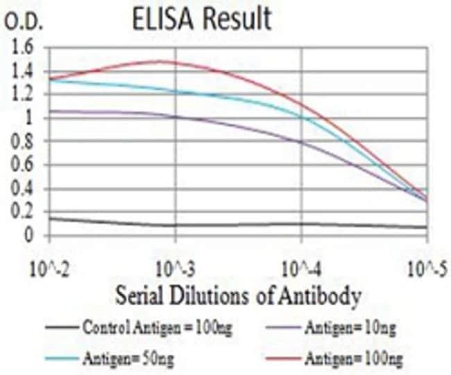 ARD1A Mouse anti-Human, Monkey, Mouse, Clone:3G3E9, Abnova 100µg