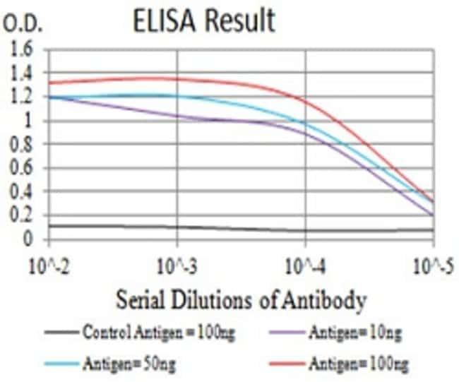 DNM2 Mouse anti-Human, Clone:3F5C7, Abnova 100µg