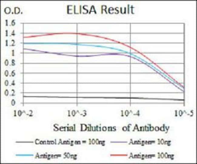 HEXA Mouse anti-Human, Clone:3F10, Abnova 100µg