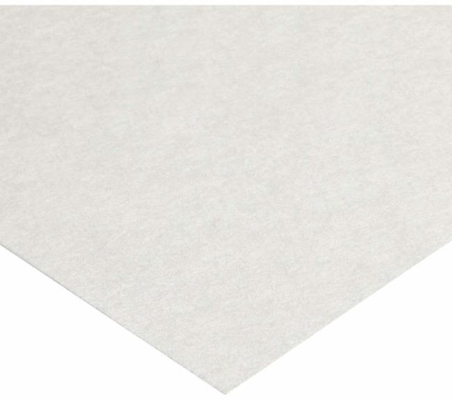 Ahlstrom-MunksjoQualitatitve Non Wet Strengthened Filter Paper, Grade 613