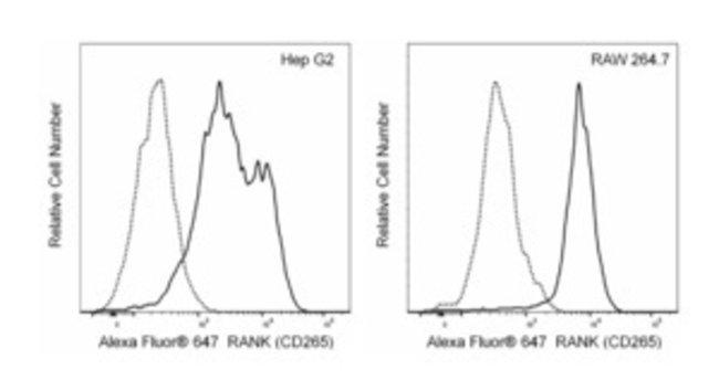RANK (CD265) Mouse anti-Mouse,Human, Alexa Fluor 647, Clone: 9A725, BD