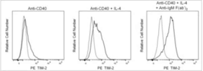 TIM-2 Rat anti-Mouse, PE, Clone: RMT2-26, BD Pharmingen Ms TIM-2 PE RMT2-26