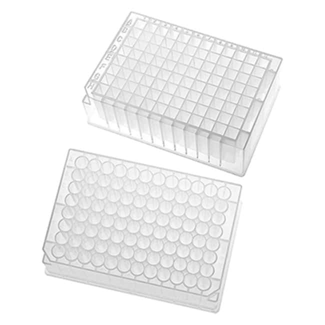 SP Bel-Art96 Deep-Well Plates, Automation Compliant:Microplates:Storage