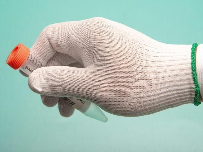 BerkshireBCR Single-Knit Nylon Full-Finger Cleanroom Glove Liners:Personal