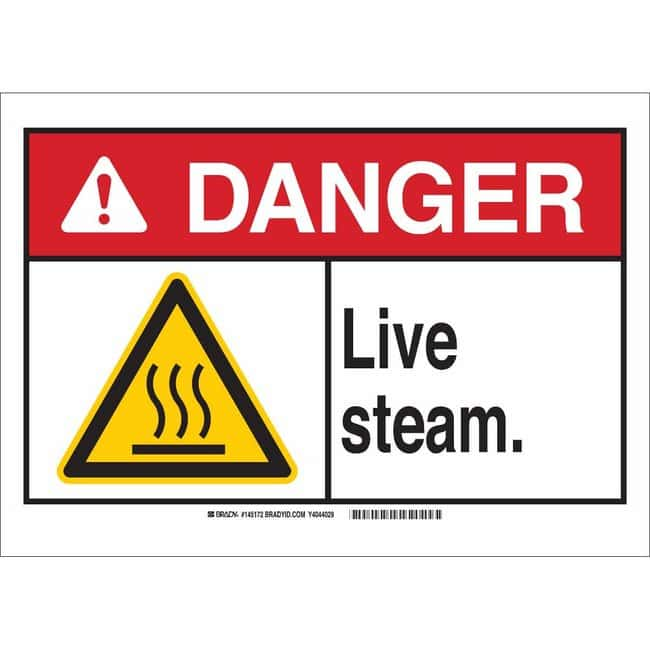 Brady Aluminum Sign: LIVE STEAM. 7 x 10 in.:Gloves, Glasses and Safety