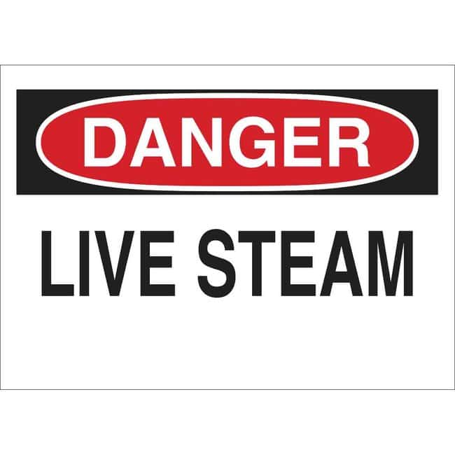 Brady Polyester Sign: LIVE STEAM. 7 x 10 in., Without Picto:Gloves, Glasses