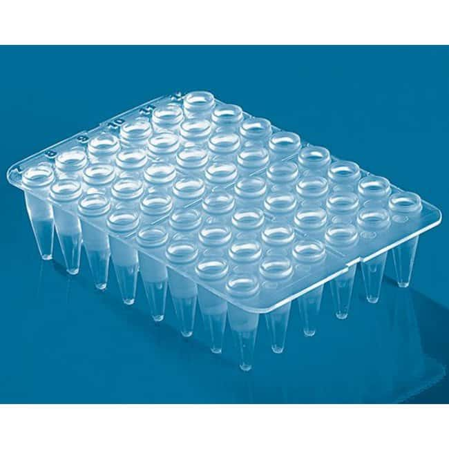 BRAND™48-Well PCR Plates Clear BRAND™48-Well PCR Plates
