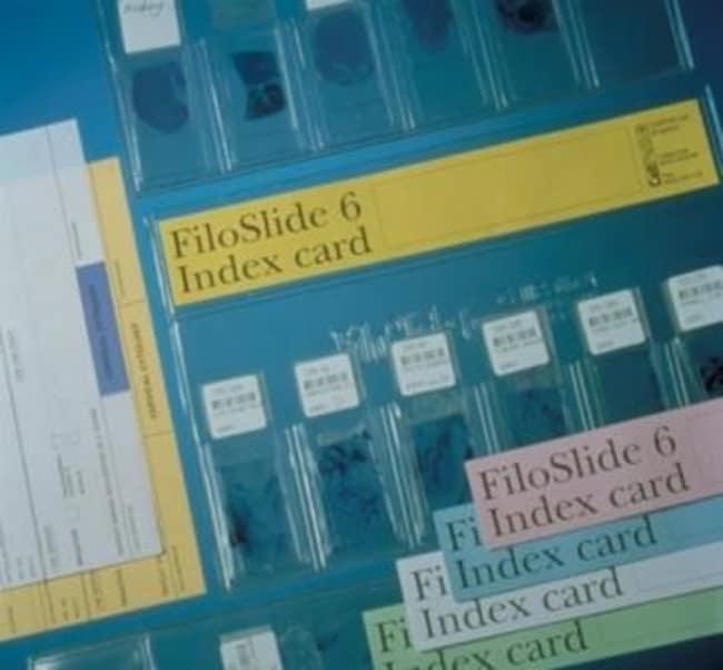 Cellpath FiloSlide Plastic Slide Wallets Filoslide 6 wallet w/Index Strips;