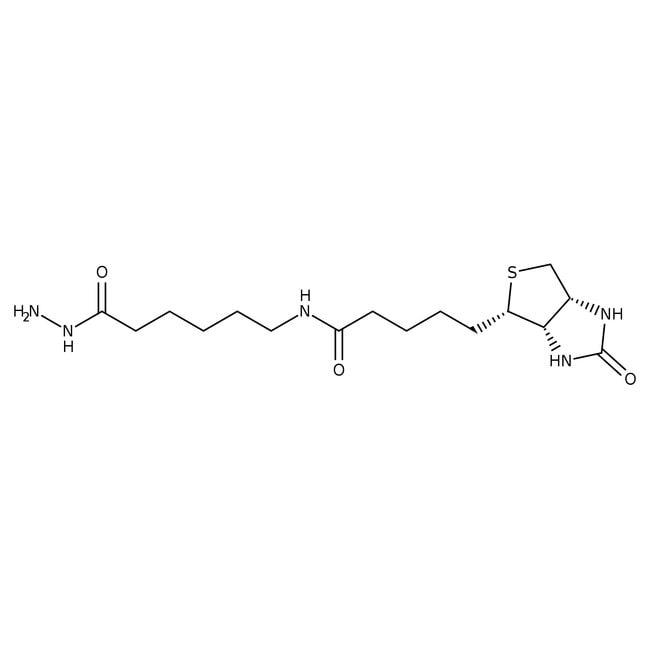N′′-Biotinyl-6-aminohexanoylhydrazide 97.0+%, TCI America™