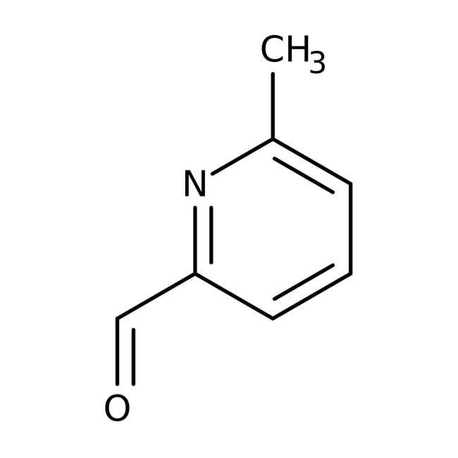 6-Methyl-2-pyridinecarboxaldehyde, 97%, ACROS Organics™ 25g 6-Methyl-2-pyridinecarboxaldehyde, 97%, ACROS Organics™