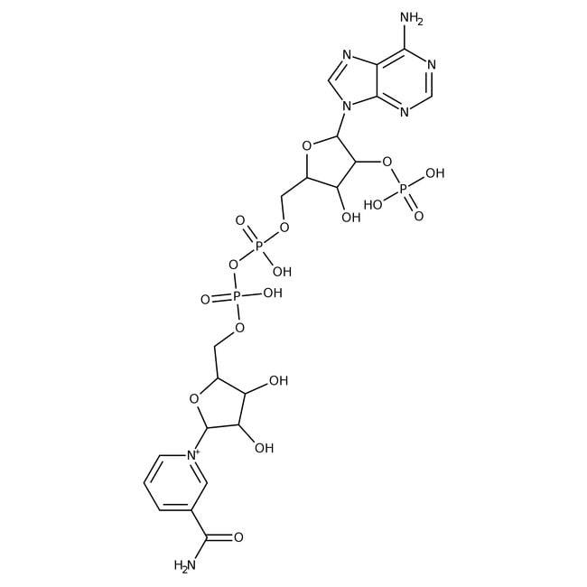 β-Nicotinamide adenine dinucleotide phosphate sodium salt hydrate, 97+%, ACROS Organics™