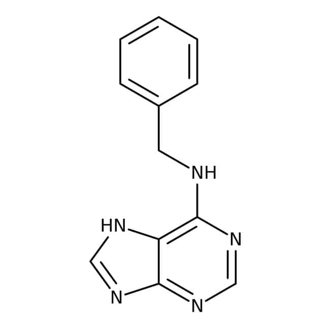 6-Benzylaminopurine, 99%, ACROS Organics™ 25g; Glass bottle 6-Benzylaminopurine, 99%, ACROS Organics™