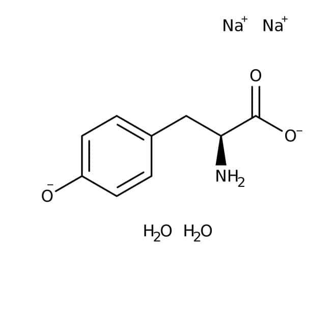 L-Tyrosine Disodium Salt, MP Biomedicals