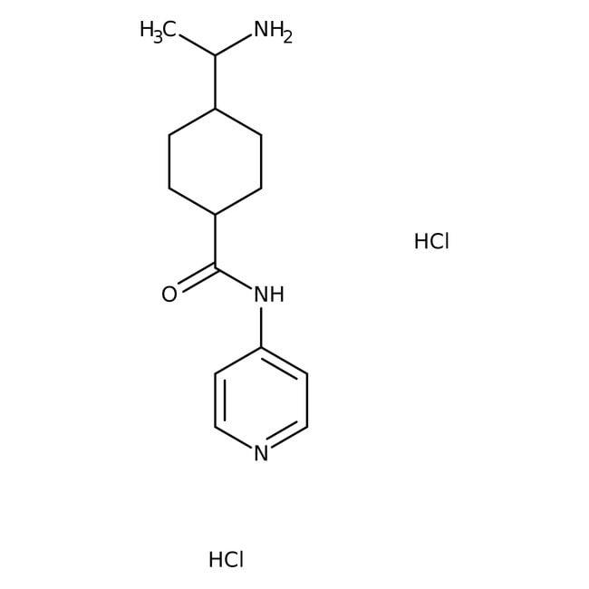 Y-27632 dihydrochloride, Tocris Bioscience™ 1mg Y-27632 dihydrochloride, Tocris Bioscience™