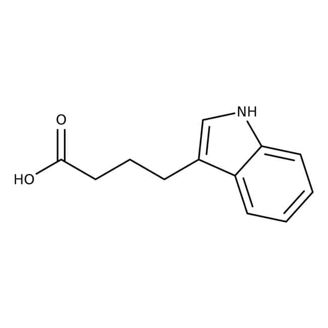 Indole-3-butyric acid, MP Biomedicals™