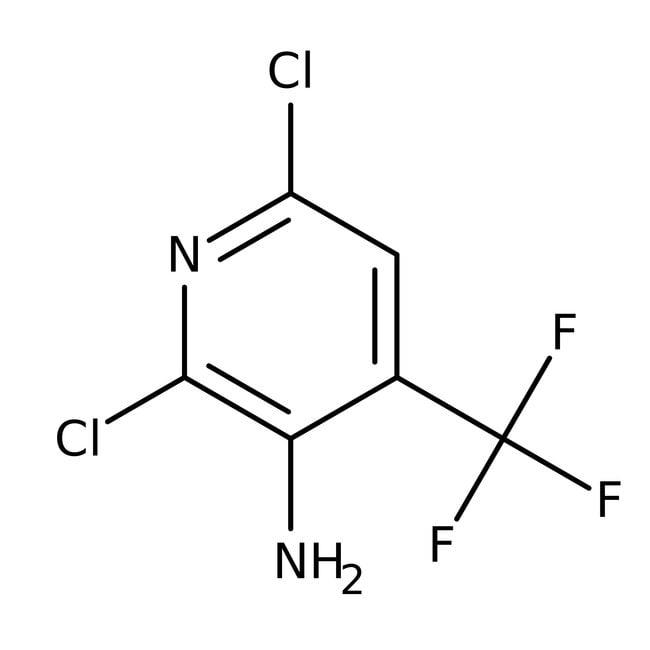 2,6-Dichlor-4-(trifluormethyl)-pyridin-3-amin, 97%, Maybridge Braunglasflasche, 25g 2,6-Dichlor-4-(trifluormethyl)-pyridin-3-amin, 97%, Maybridge