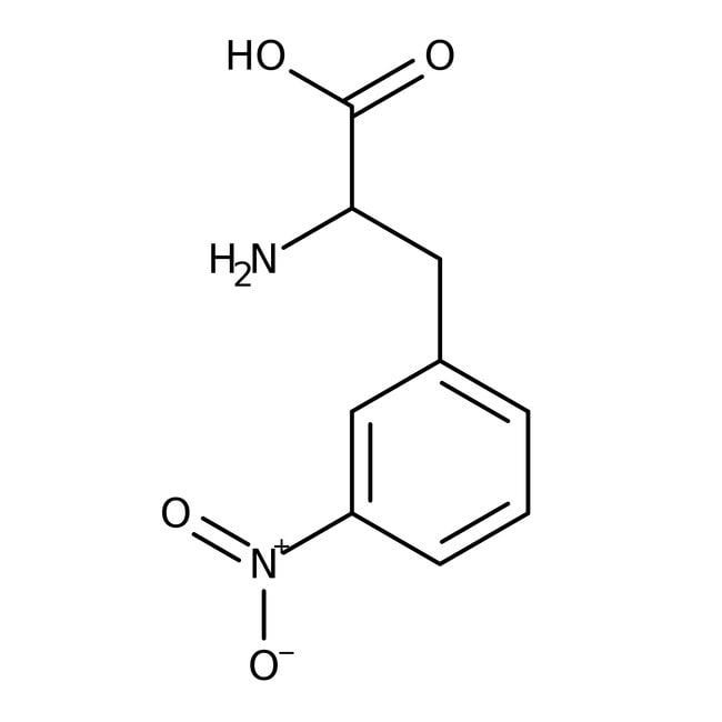 Alfa Aesar™3-Nitro-L-phenylalanine, 95% 5g Alfa Aesar™3-Nitro-L-phenylalanine, 95%