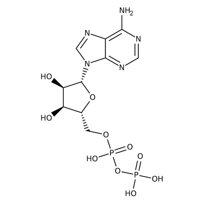 Adenosine-5'-diphosphate Monosodium Salt, 97.7%, MP Biomedicals™