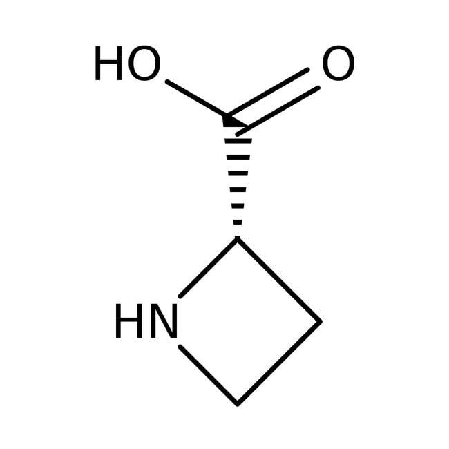 (S)-(-)-2-Azetidinecarboxylic acid, 99+%, ACROS Organics™ 50mg (S)-(-)-2-Azetidinecarboxylic acid, 99+%, ACROS Organics™