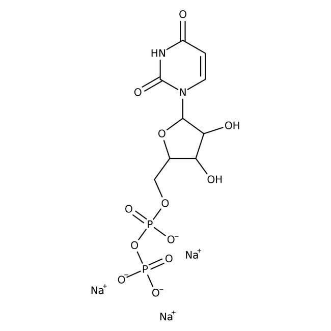 Alfa Aesar™Uridine-5'-diphosphate trisodium salt, 98+% 100mg Alfa Aesar™Uridine-5'-diphosphate trisodium salt, 98+%