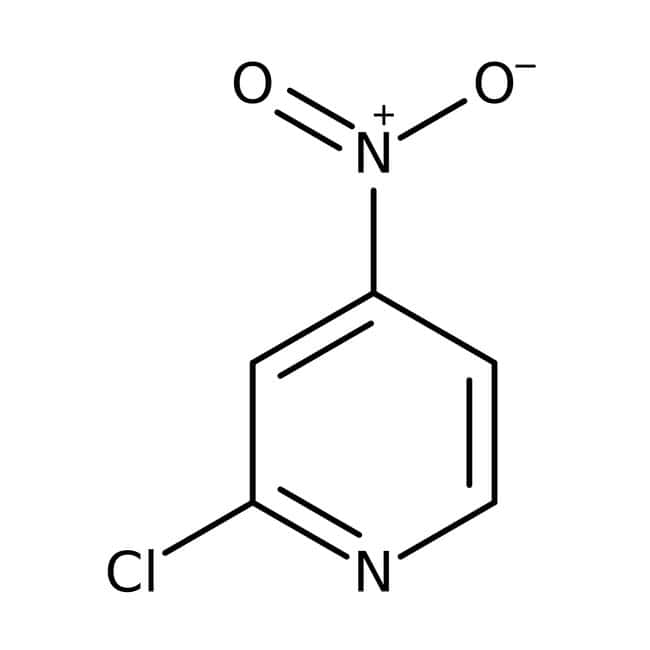 2-Chloro-4-nitropyridine, 98%, ACROS Organics™ 1g 2-Chloro-4-nitropyridine, 98%, ACROS Organics™