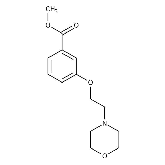 Methyl 3-(2-morpholin-4-ylethoxy)benzoate, 97%, Maybridge Amber Glass Bottle; 1g Methyl 3-(2-morpholin-4-ylethoxy)benzoate, 97%, Maybridge