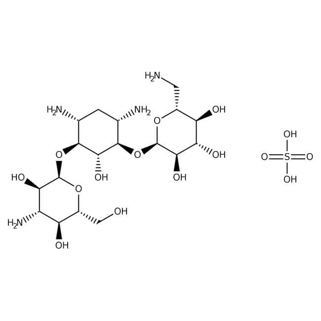 Kanamycin monosulfate, MP Biomedicals™