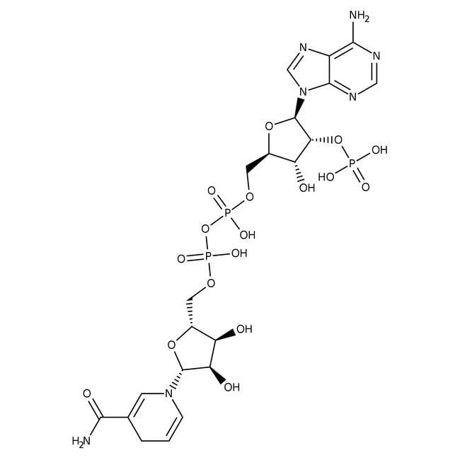 Beta - Nicotinamide Adenine Dinucleotide Phosphate Reduced Tetrasodium Salt 98% MP Biomedicals